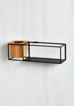 Modern Marvelous Shelf in Small