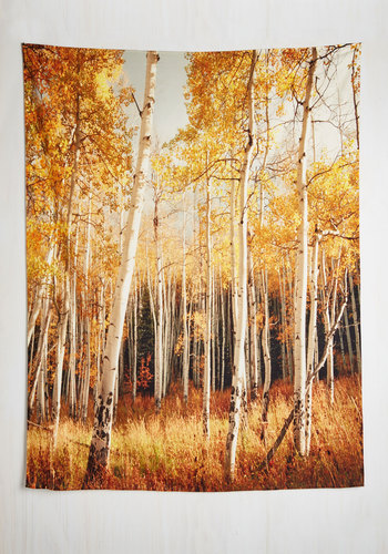 Get in on the Aspen Tapestry