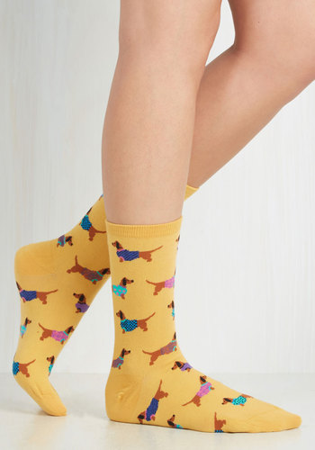 Gold Medal Wiener Dog Socks - Yellow, Multi, Print with Animals, Casual, Quirky, Knitted, Best Seller, Critters, Dog, Top Rated