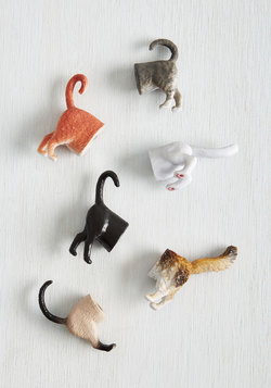 Posterior Design Magnet Set in Cats