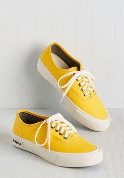 Can I Kickflip It? Sneaker