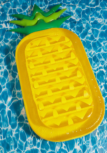 And Anana Thing Pool Float