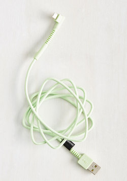 What Do You Sync? Charging Cable in Mint