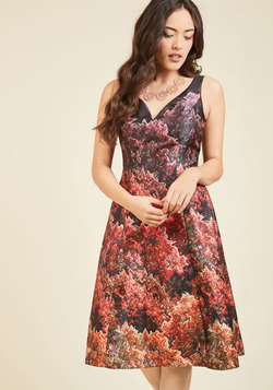 Ornate Observation A-Line Dress